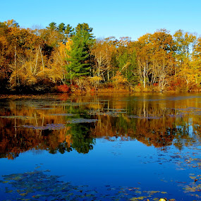 East Killingly CT by Martin Stepalavich - Landscapes Waterscapes (  )