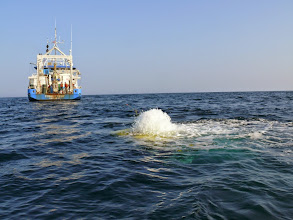 Photo: Kraken2 ROV begins it's descent into the deep waters of Gulf of Maine (Image courtesy of Gulf of Maine Deep Sea Coral Science Team 2014/NURTEC-UConn/NOAA Fisheries/UMaine)