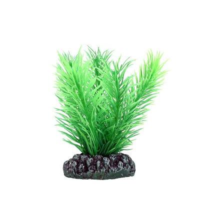 Mayaca Plastväxt 7cm