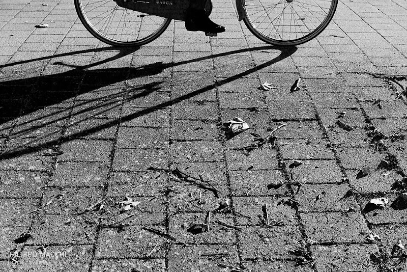 Photo: Bicycle