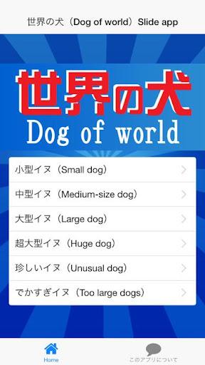 世界の犬(Dog of world)-世界で愛されるイヌ写真