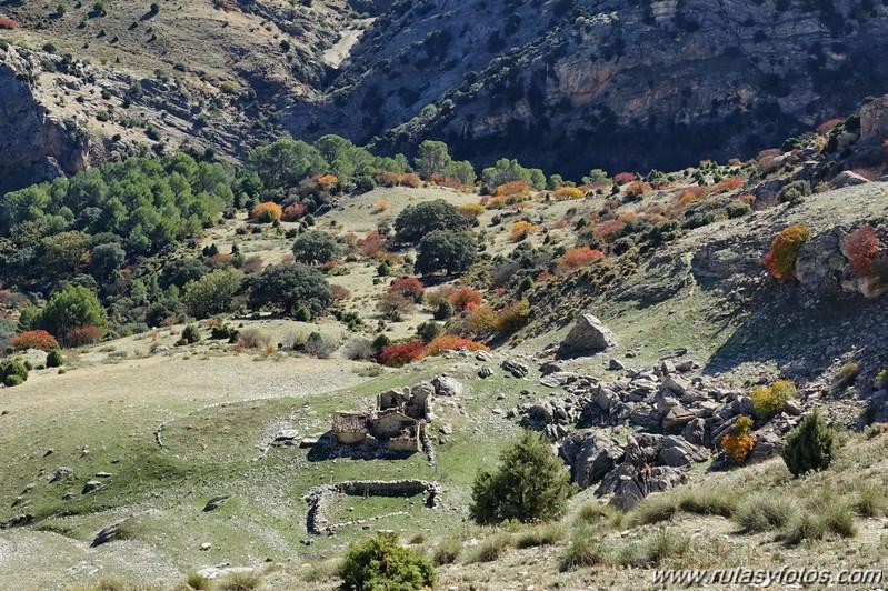 Cornicabral del Valle de Lifa