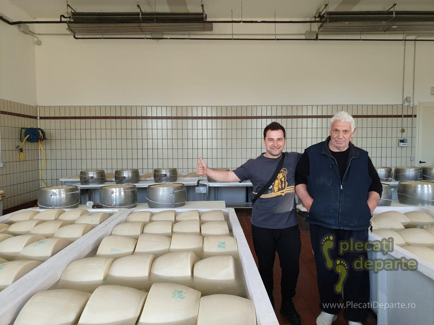 Am avut ocazia sa intru si sa vad procesul tehnologic de obtinere a parmezanului (parmigiano reggiano) intr-o microproductie din afara orasului Parma, Italia. bologna parma lugo obiective mancaruri traditionale italia