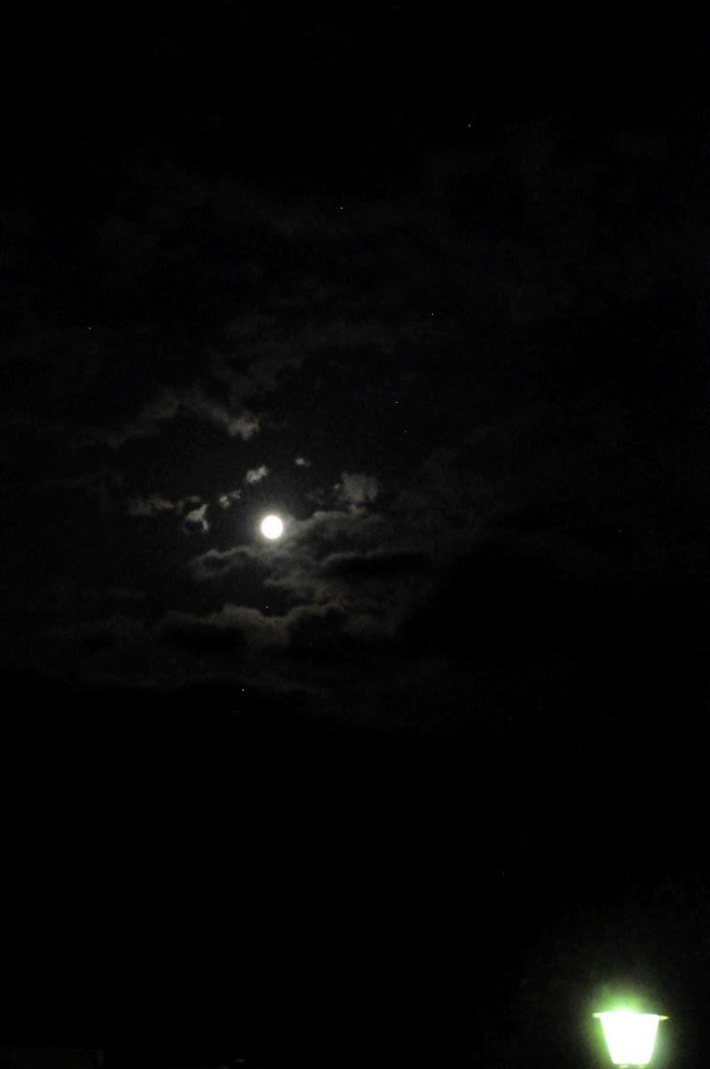 ......Terra chiama luna....... di grillosimpaticone