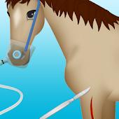 horse surgery games 2