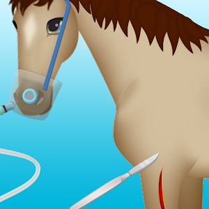 horse surgery games 2 for PC and MAC