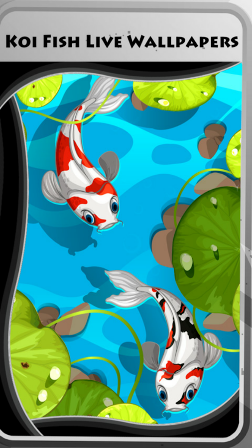 Koi fish live wallpapers android apps on google play for Where do koi fish live