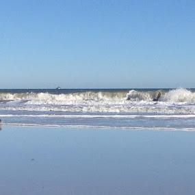 Jacksonville Beach by Leah Bittner - Landscapes Beaches