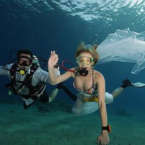 underwater happines by Adi Drnda - Wedding Bride & Groom ( red sea, white in red sea, underwater, wedding, bride&groom,  )