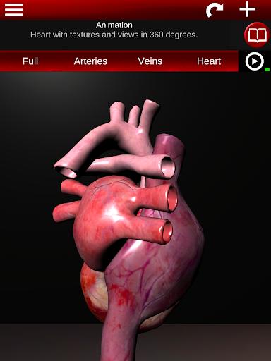Circulatory System in 3D (Anatomy) 1.58 screenshots 18