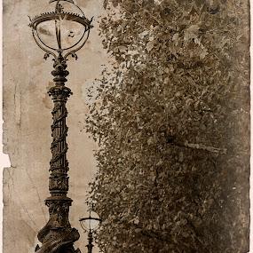Riverside by Svetoslava Todorova - City,  Street & Park  Vistas ( riverside, thames, london, vintage, old lamp posts, retro, trees )