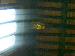 Photo: One of the dozen or so Gold Angels in the rafters at Horncastle, the light rays turning them into a symphony at a glance, better than any rave disco..