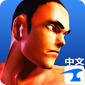 Kungfu Punch CN icon