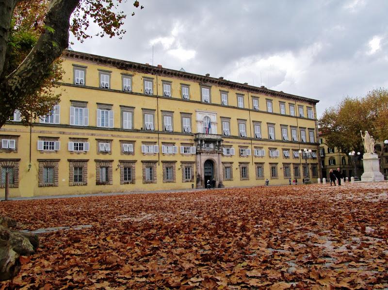Tappeto di foglie di Giorgio Lucca