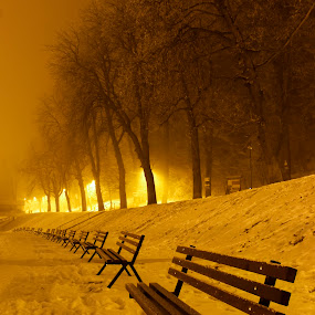 Night in park by Comsa Bogdan - City,  Street & Park  City Parks ( canon, bench, street, romania, cityscape, travel, city park, frozen, photography, city, brasov, night photography, cold, gorgeous, awesome, comsa bogdan, nighttime, snow, photographer, wonderful, night scene, beautiful, canvas, photo, amazing, frame, night view, fog, trees, night, night shot, travel photography, romania prin obiectiv,  )