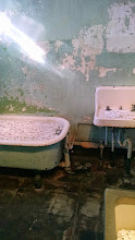 Photo: Ai Weiwei bathroom art - tubs, toilets, and sinks filled with flowers