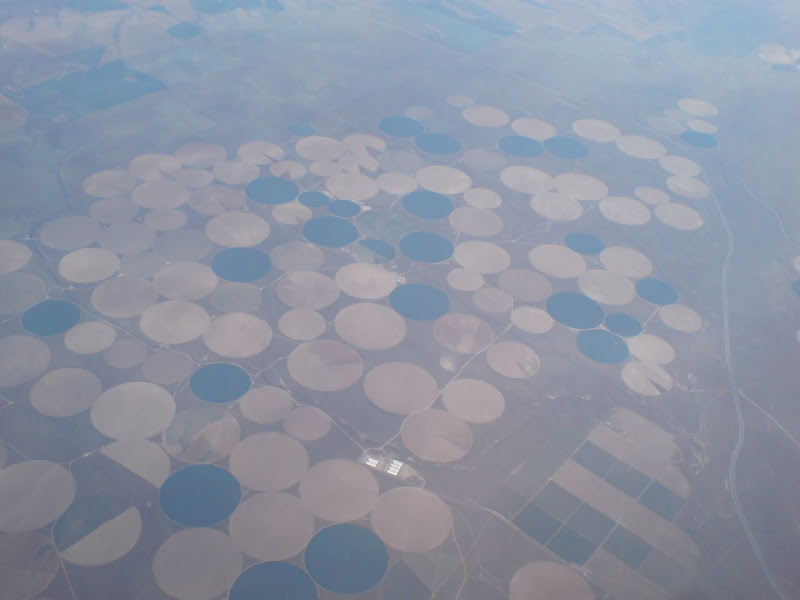 Photo: Crop circles?