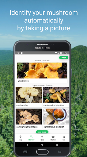 Mushroom Identify - Automatic picture recognition 2.35 screenshots 2