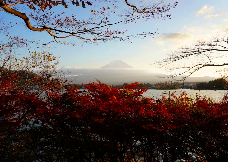 日本を振り返って魅力を再開発したい〜河口湖で秋の富士を撮影報告