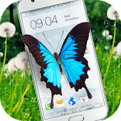 Butterfly in Phone lovely joke