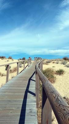 Verso il mare! di monica_saba