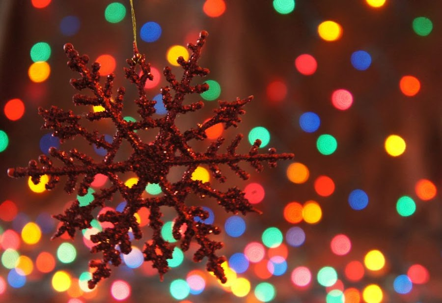 by Heather Walker - Public Holidays Christmas