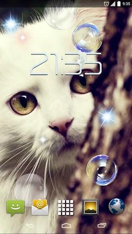 android Cute Cats HD Live Wallpaper Screenshot 0