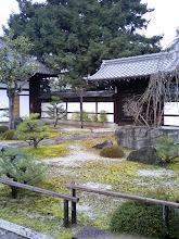 Photo: 天寧寺