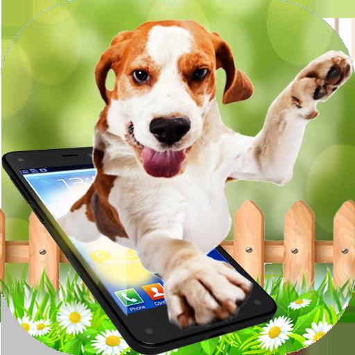 Dog walks On Screen - Cute Dog in Phone Funny Joke