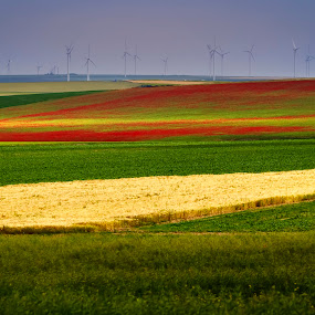 by Silviu Zlot - Landscapes Prairies, Meadows & Fields