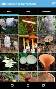 Audubon Mushrooms - screenshot thumbnail