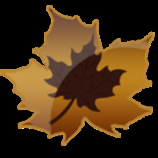 Autumn Leaf Water Drops Theme