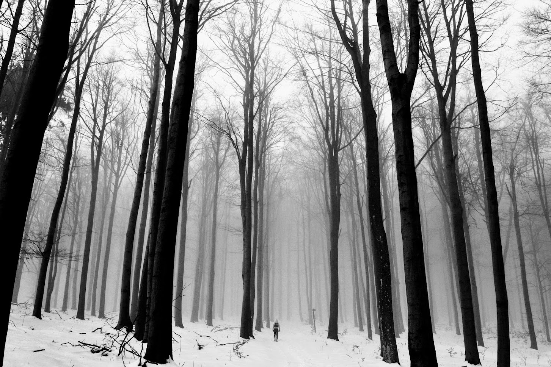 Téli tüdőtisztító túra