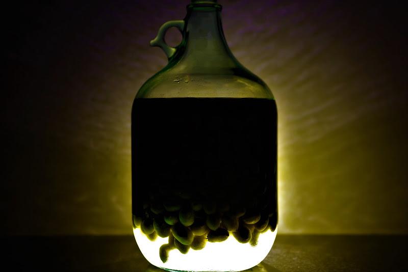 Un boccione di olive... di nestowolf