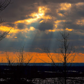 WINTER SKY by Marc-Andre Grenier - Landscapes Cloud Formations ( clouds, sky, trees, sun rays, fields )