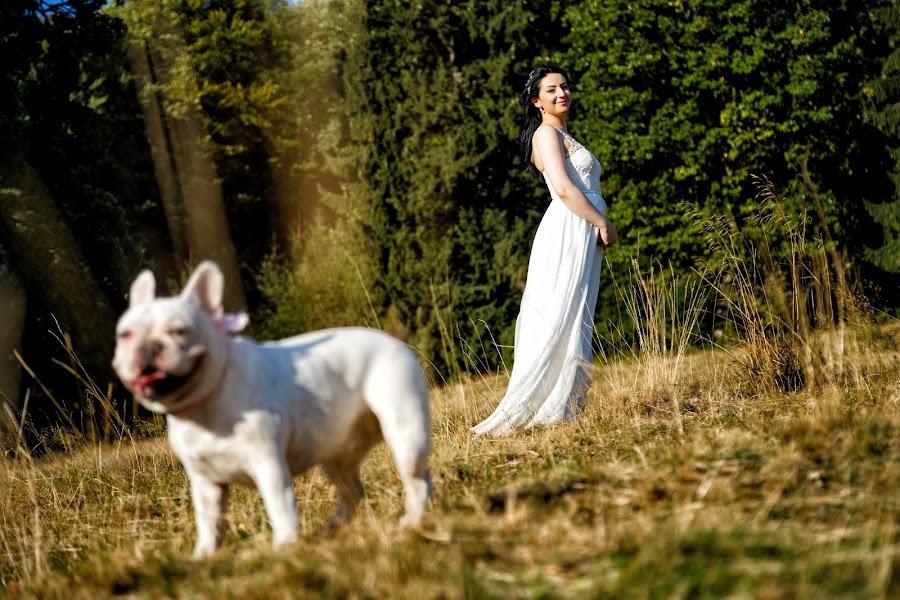 Fotograful de nuntă Tudose Catalin (ctfoto). Fotografia din 31.10.2017