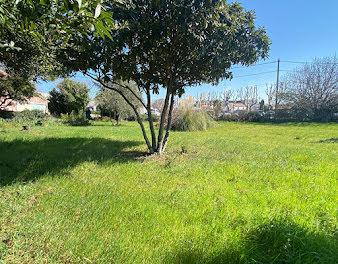 terrain à Istres (13)