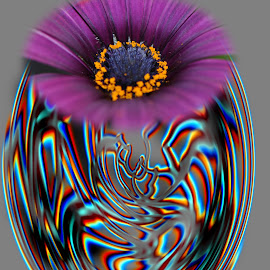 abstract flower by Paul Wante - Digital Art Abstract ( abstract, colors, art, digital, flower )