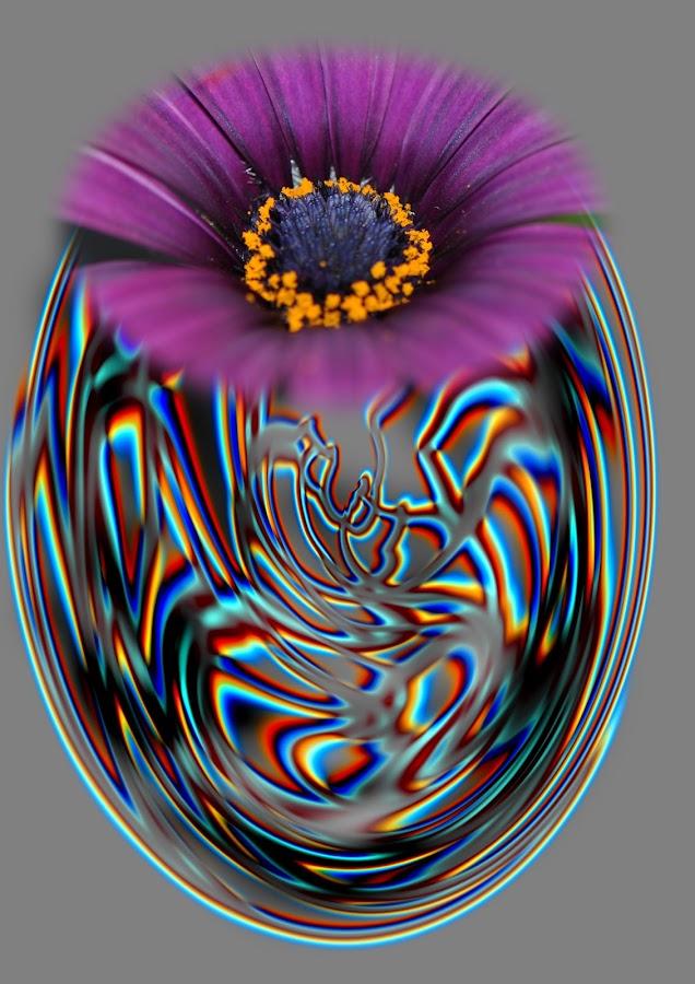 abstract flower by Paul Wante - Digital Art Abstract ( abstract, colors, art, digital, flower )