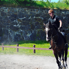 RIDING A HORSE by Wojtylak Maria - Sports & Fitness Other Sports ( horse, animal, riding, rider, human, sport,  )