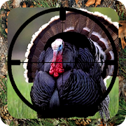 Turkey Hunt Calls
