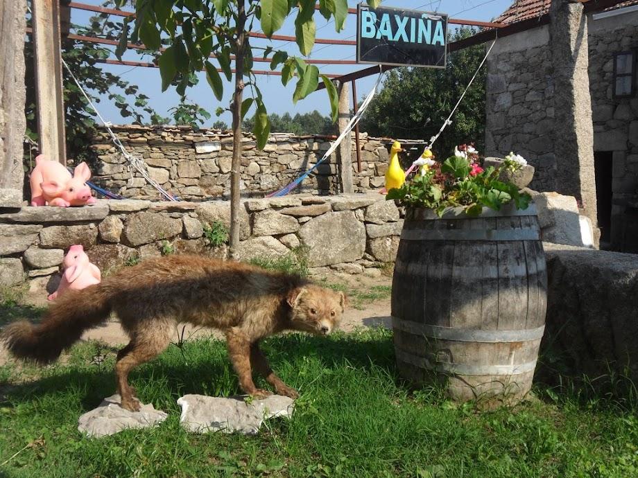 Foto Tapería Baxiña 3
