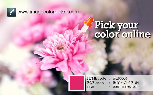 Image Color Picker - Pick your color online