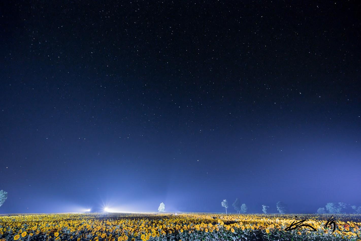 壮大な宇宙に浮かび上がるひまわり畑