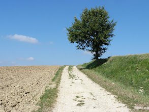 Photo: Le chemin en solitaire