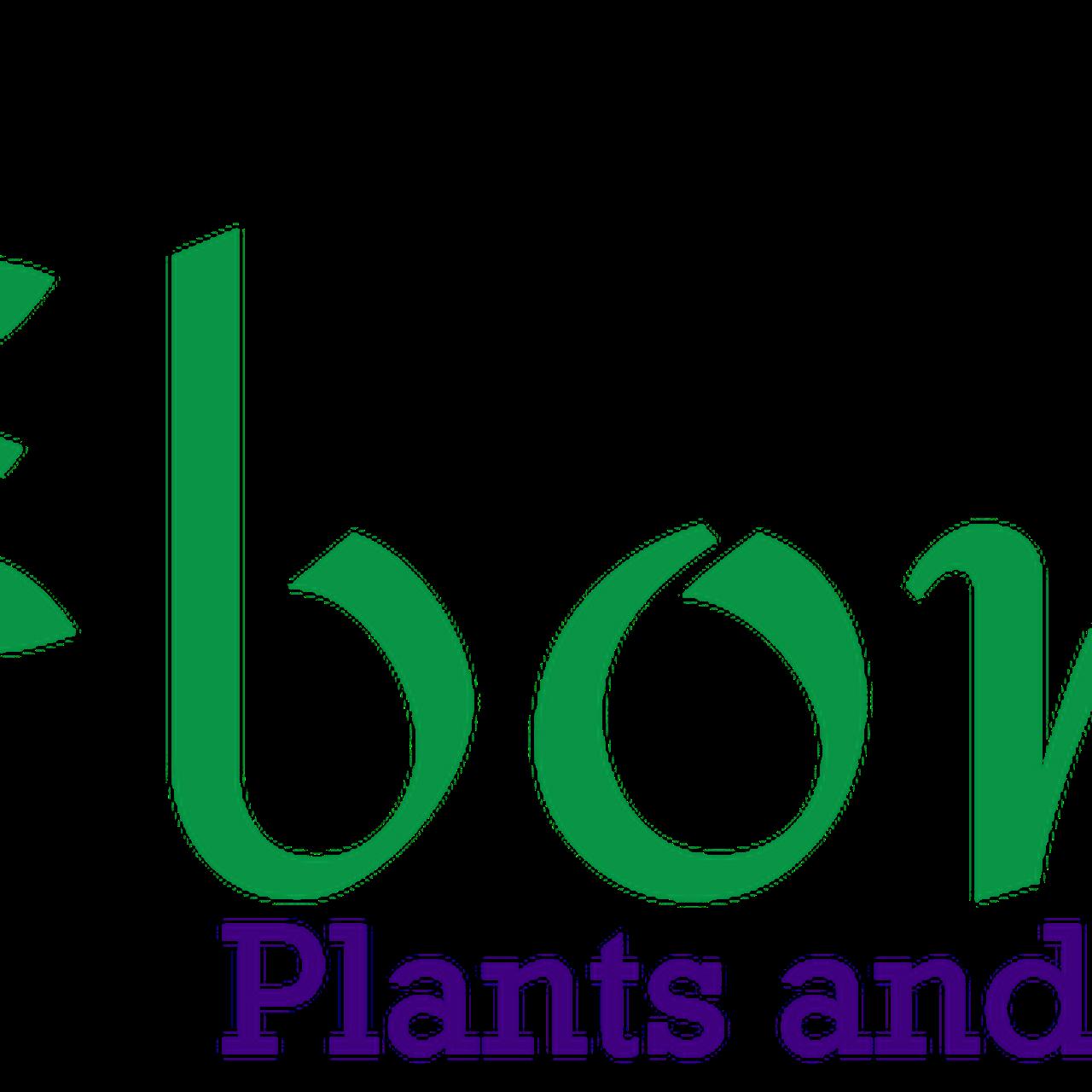 Bonita Plants And Landscapes Landscape Architect