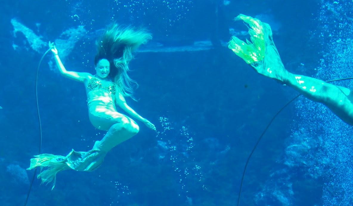 mermaids are real in weeki wachee