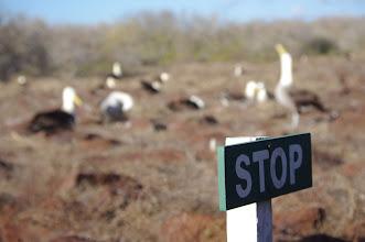 Photo: Stop