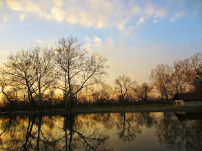 Photo: Trees reflected in a lake at sunset at Eastwood Park in Dayton, Ohio.