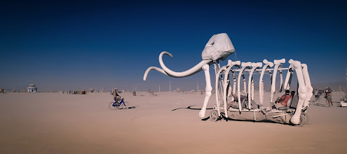 Photo: The Bleached White Bones of a Mammoth... crossing the desert in the deep afternoon.